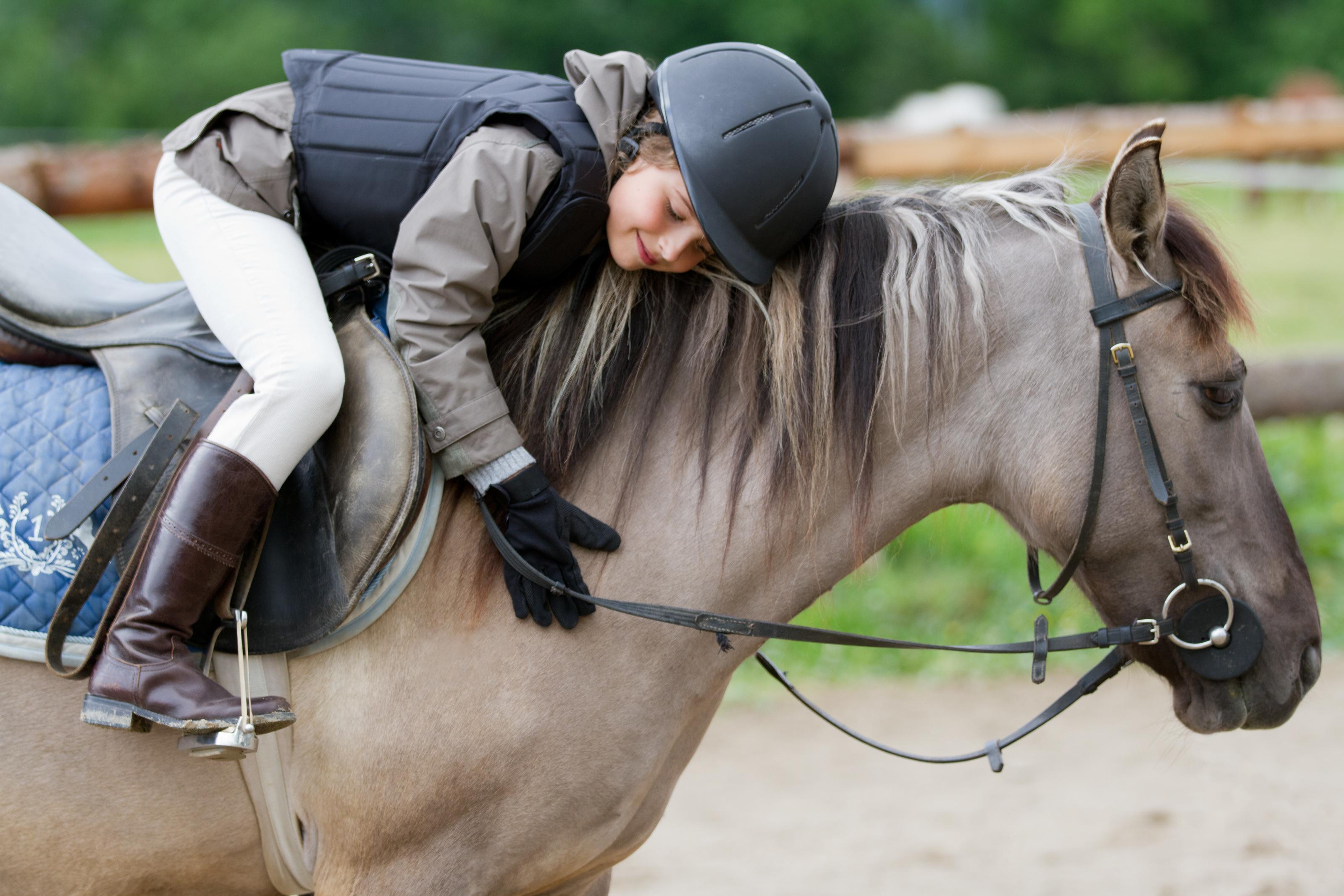 Horse Riding at Horse Dynamics